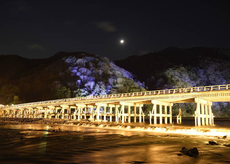 "2. ""Arashiyama Hanatouro"" - Illuminating the historical cultural heritage of Sagano and Arashiyama"