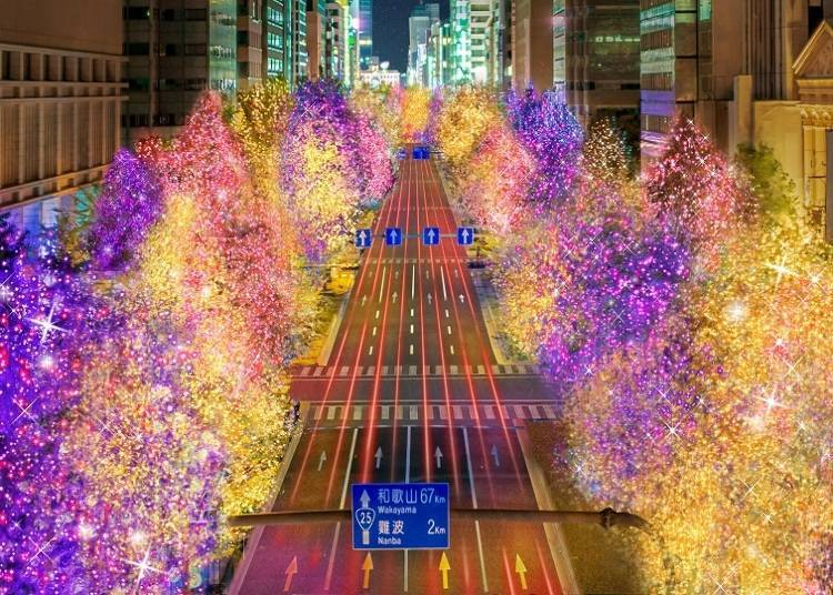 3. Osaka's City-wide Festival of Light