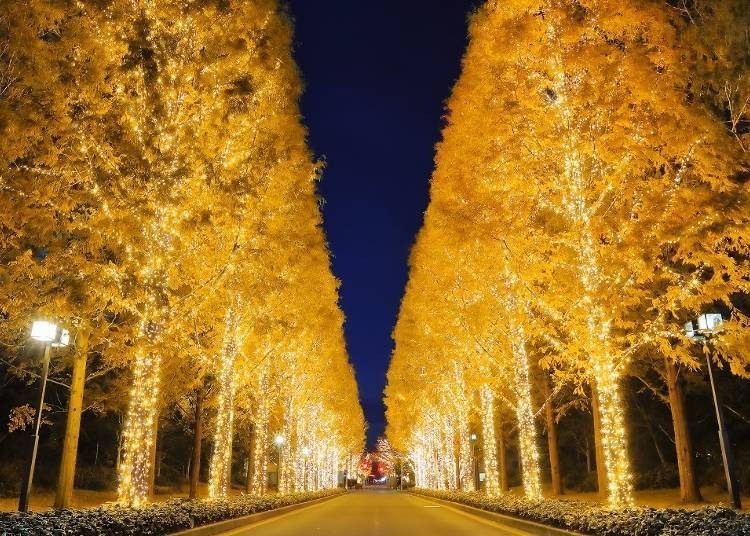 "5. Kyoto's ""Rohm Illumination"" – Fantastic Light and Music"